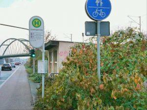 bus-goldregenweg2
