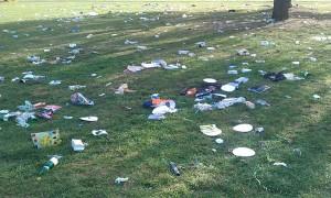 Müll in Grünanlagen