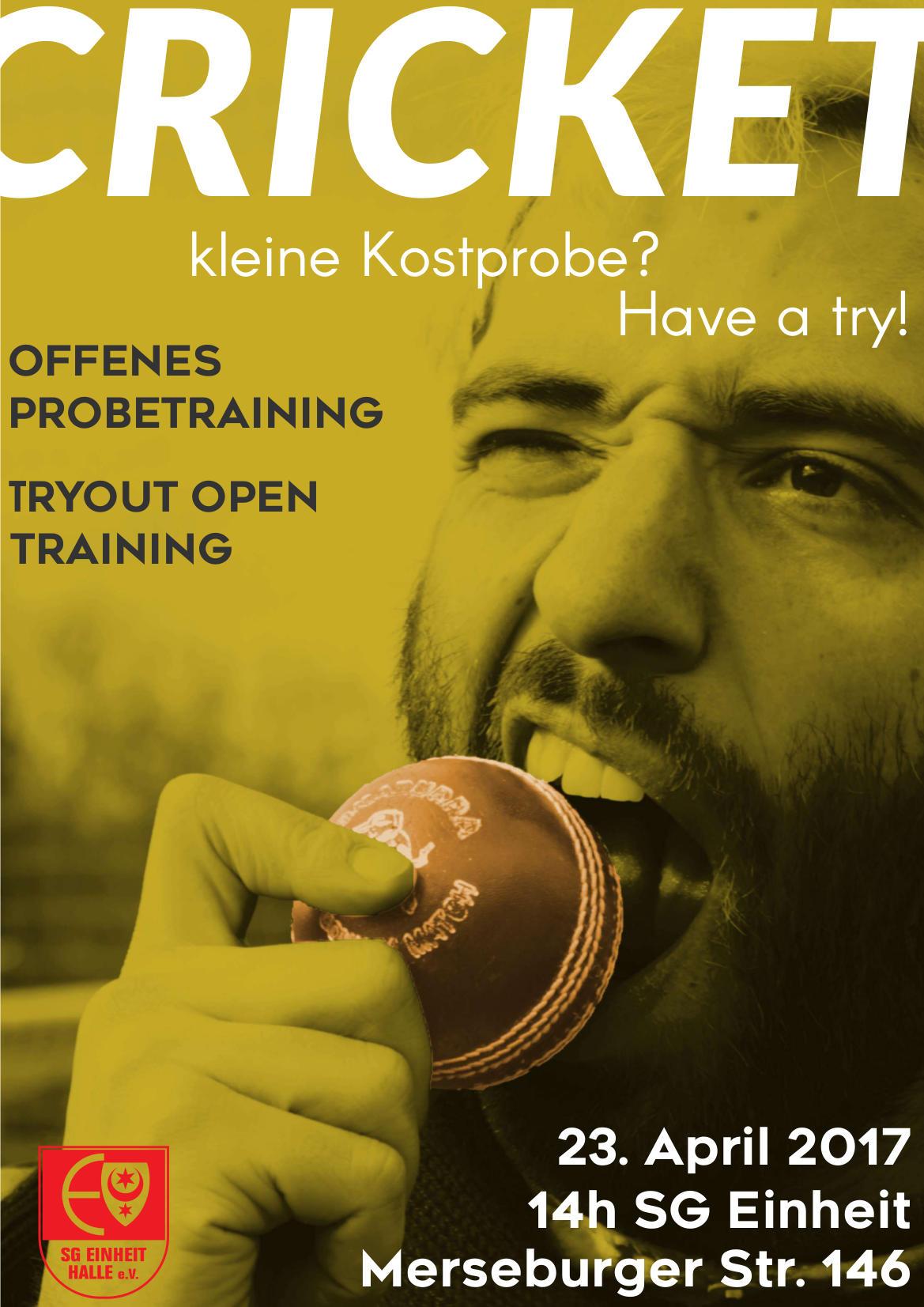 Cricket Plakat