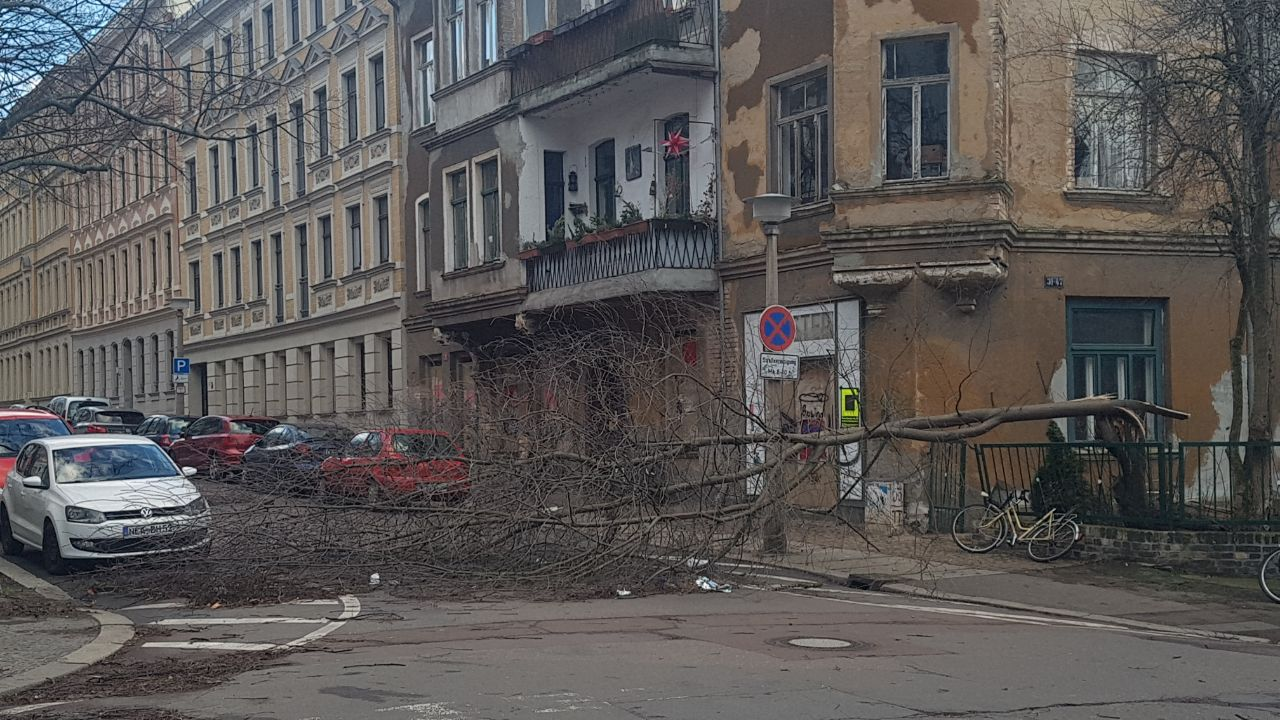 Sturm Sachsen